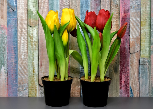 Best Artificial Flowers For The Outdoors