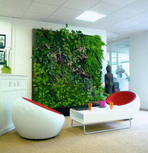 Best Artificial Plant/Green Wall