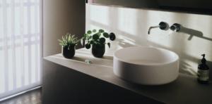 Best Artificial Bathroom Plants